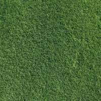 Bermuda Grasses Manufacturers