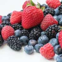 Berries Manufacturers