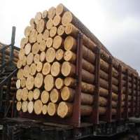 Round Logs Manufacturers