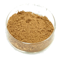 Tongkat Ali Extract Manufacturers