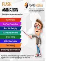 Flash应用程序服务 制造商