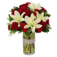 Dazzling Lilies Manufacturers
