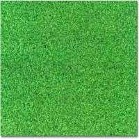 Artificial Grass Carpet Manufacturers