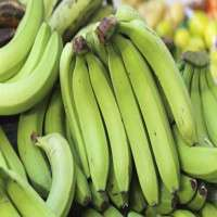 Green Banana Manufacturers