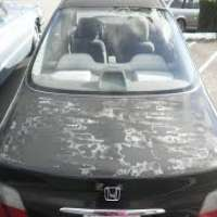 Car Clear Coats Manufacturers