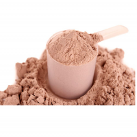 Chocolate Protein Powder Importers