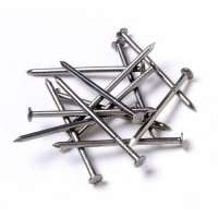 MS Wire Nail Manufacturers