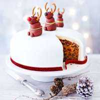Christmas Cake Manufacturers