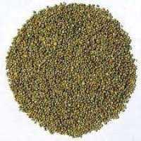 小米种子 制造商