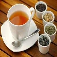 Tea Manufacturers