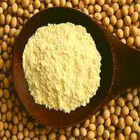 Soybean Protein Concentrate Manufacturers