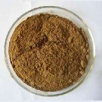 Bacopa Monnieri Extract Manufacturers