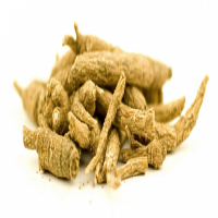 Siberian Ginseng Importers