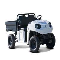 Electric Utility Vehicle Manufacturers