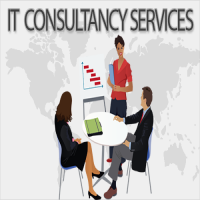 IT Consultancy Manufacturers