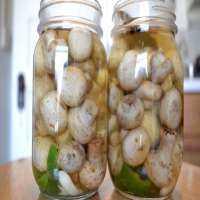 Pickled Mushroom Manufacturers