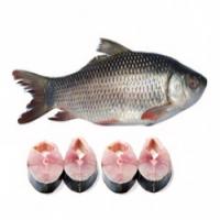 Rohu Fish Manufacturers