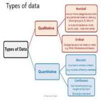 Data Tabulation Services Manufacturers