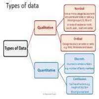 数据制表服务 制造商