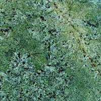 Green Granite Tile Importers