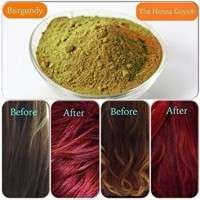 Burgundy Henna Powder Manufacturers