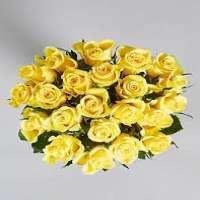 Yellow Rose Manufacturers