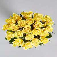 Yellow Rose Manufacturers