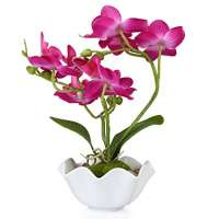 Orchid Flower Manufacturers