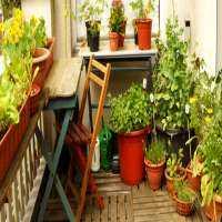 Balcony Gardening Manufacturers