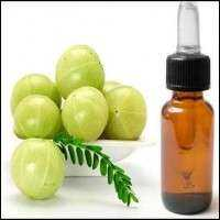 Amla Oil Manufacturers