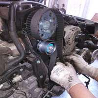 Car Timing Belt Importers