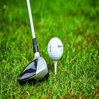 Golf Driver Importers