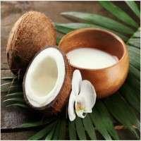 Coconut Milk Manufacturers