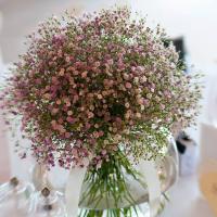 Gypsophila Flower Manufacturers