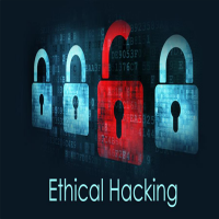 Ethical Hacking Services Manufacturers