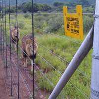 Security Fences Manufacturers
