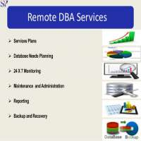 Remote Database Monitoring Services Manufacturers