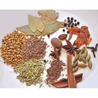 Spice Flavour Manufacturers