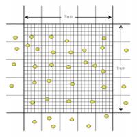 Haemocytometer Manufacturers