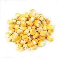 Dried Corn Manufacturers