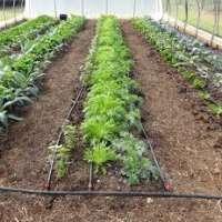 花园滴灌线 制造商