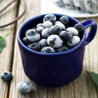 Frozen Blueberry Manufacturers