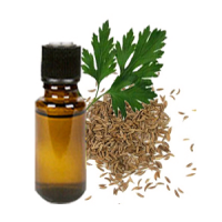 Davana Oil Manufacturers