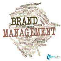 Brand Management Service Manufacturers