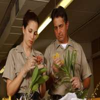 Plant Inspection Service Manufacturers