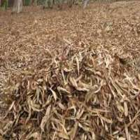 Agro Waste Manufacturers
