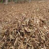 农业废物 制造商