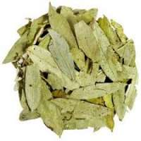 Dry Curry Leaves Manufacturers