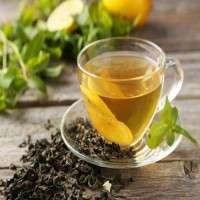 Tulsi Tea Manufacturers