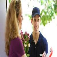 Flower Delivery Service Manufacturers